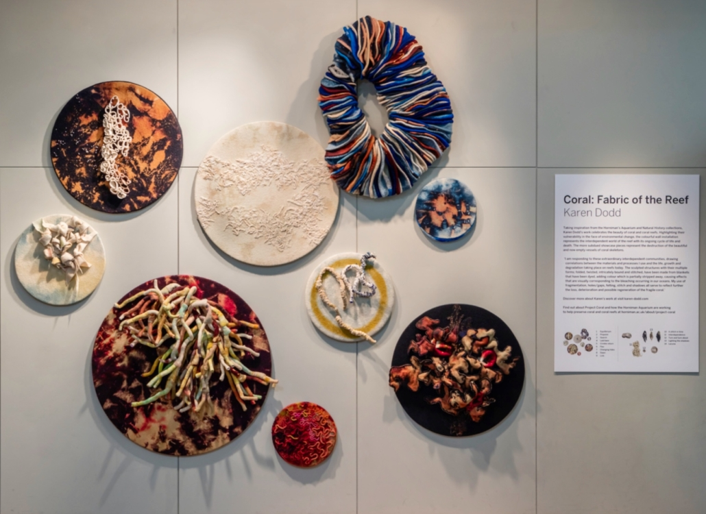 """Karen Dodd's """"Coral:Fabric of the Reef"""" installation"""
