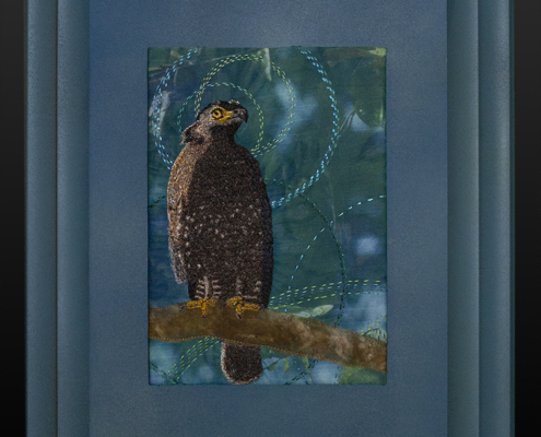 Crested Serpent Eagle by Christina Fairley Erickson