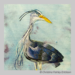 Cheeky Blue Heron by Christina Fairley Erickson